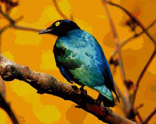 Картина по номерам (раскраска) 40х50 - Яркая птичка на ...
